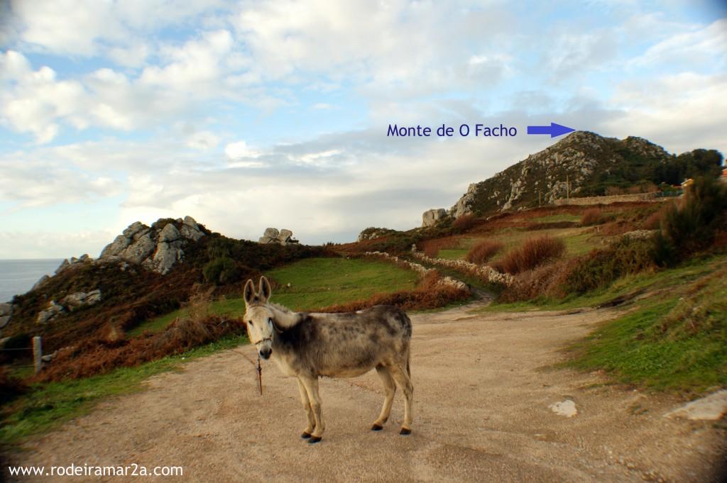 Monte de O Facho