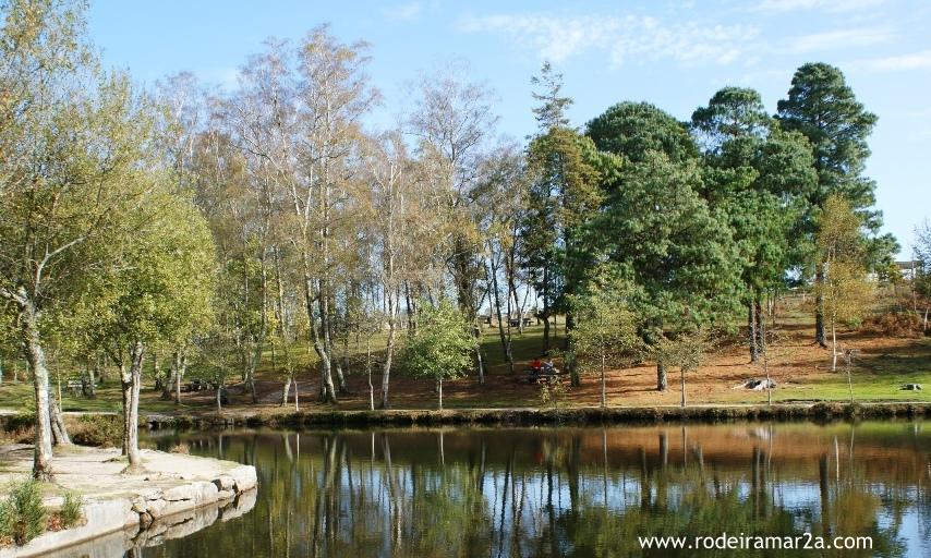 Lago de castiñeiras y parque de la naturaleza de cotorredondo