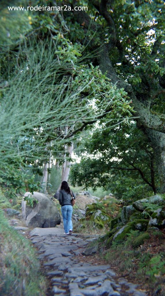Camino de piedra. Subida al Facho
