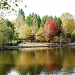 Lago de Castiñeiras. Parque de la Naturaleza de Cotorredondo