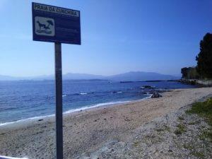 Playa para perros en Cangas do Morazo. Rías Baixas